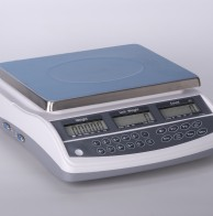PSI DK60 SERIES SINGLE COUNTING SCALE